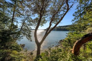 Photo 32: 1966 Gillespie Rd in : Sk 17 Mile House for sale (Sooke)  : MLS®# 878837
