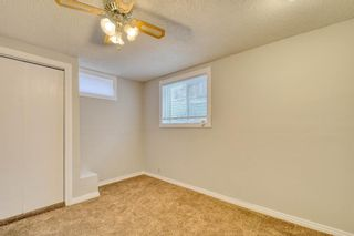 Photo 49: 355 Whitman Place NE in Calgary: Whitehorn Detached for sale : MLS®# A1046651