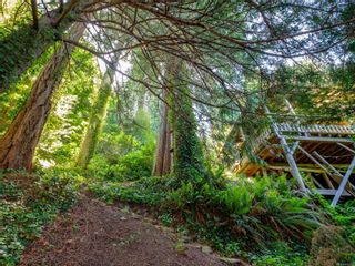 Photo 18: 7484 Lantzville Rd in : Na Lower Lantzville House for sale (Nanaimo)  : MLS®# 878100