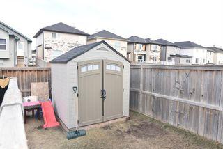 Photo 12: 85 Saddlehorn Close NE in Calgary: Saddle Ridge Detached for sale : MLS®# A1096227