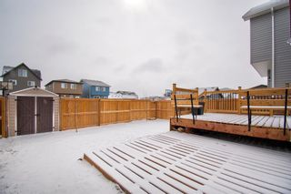 Photo 2: 304 Chinook Gate Close SW: Airdrie Detached for sale : MLS®# A1098545