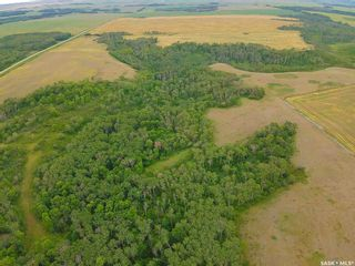 Photo 6: Rm Indian Head 160.39 acres in Indian Head: Farm for sale (Indian Head Rm No. 156)  : MLS®# SK867616