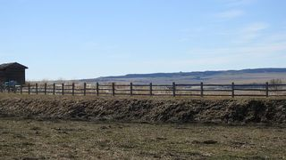 Photo 9: SE 35-20-2W5: Rural Foothills County Residential Land for sale : MLS®# A1101395