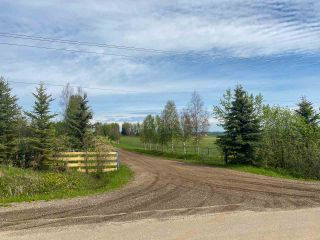 Photo 11: 15166 BUICK CREEK Road in Fort St. John: Fort St. John - Rural W 100th Agri-Business for sale (Fort St. John (Zone 60))  : MLS®# C8030416