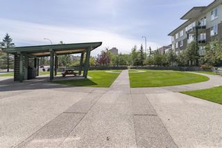 Photo 38: 235 3111 34 Avenue NW in Calgary: Varsity Apartment for sale : MLS®# A1117095