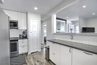 Photo 18: 1027 Penrith Crescent SE in Calgary: Penbrooke Meadows Detached for sale : MLS®# A1104837