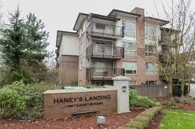 """Main Photo: 406 11667 HANEY Bypass in Maple Ridge: West Central Condo for sale in """"HANEY'S LANDING"""" : MLS®# R2155079"""