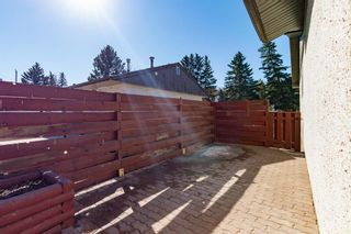 Photo 26: 8812 34 Avenue NW in Calgary: Bowness Detached for sale : MLS®# A1083626
