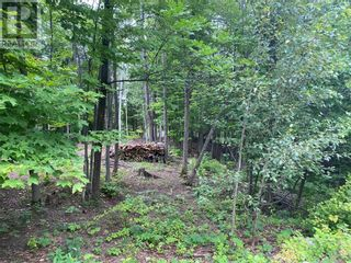 Photo 8: Lot 1 Indian Mountain Lane in Nemi: Vacant Land for sale : MLS®# 2097541
