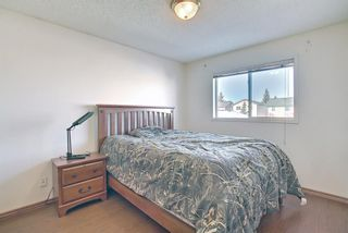 Photo 12: 70 Martinbrook Link NE in Calgary: Martindale Residential for sale : MLS®# A1071683