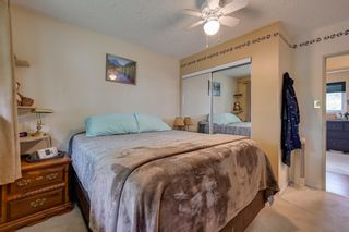 Photo 19: 12033 39 Street in Edmonton: Zone 23 House for sale : MLS®# E4248928