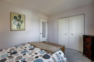 Photo 22: 1711 65 Street NE in Calgary: Pineridge Detached for sale : MLS®# A1038776