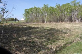 Photo 3: 408 Ohlen Street in Stockholm: Lot/Land for sale : MLS®# SK847252