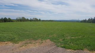 Photo 3: Lot Junction Road in Middleton: 400-Annapolis County Farm for sale (Annapolis Valley)  : MLS®# 201920425