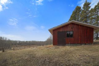 Photo 4: 11 53218 RGE RD 14: Rural Parkland County House for sale : MLS®# E4237037
