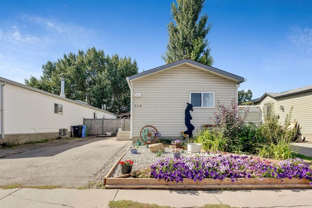 Main Photo: 249 Erin Woods Circle SE in Calgary: Erin Woods Detached for sale : MLS®# A1147067