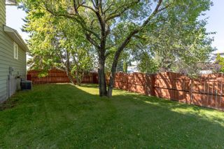 Photo 31: 55 Discovery Avenue: Cardiff House for sale : MLS®# E4261648