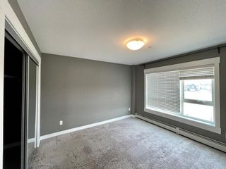 Photo 21: 1307 240 Skyview Ranch Road NE in Calgary: Skyview Ranch Apartment for sale : MLS®# A1133467