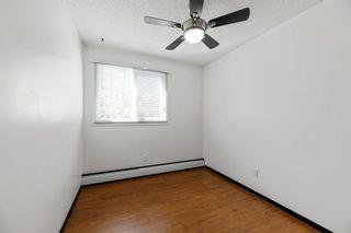 Photo 12: 16 10931 83 Street in Edmonton: Zone 09 Condo for sale : MLS®# E4228473