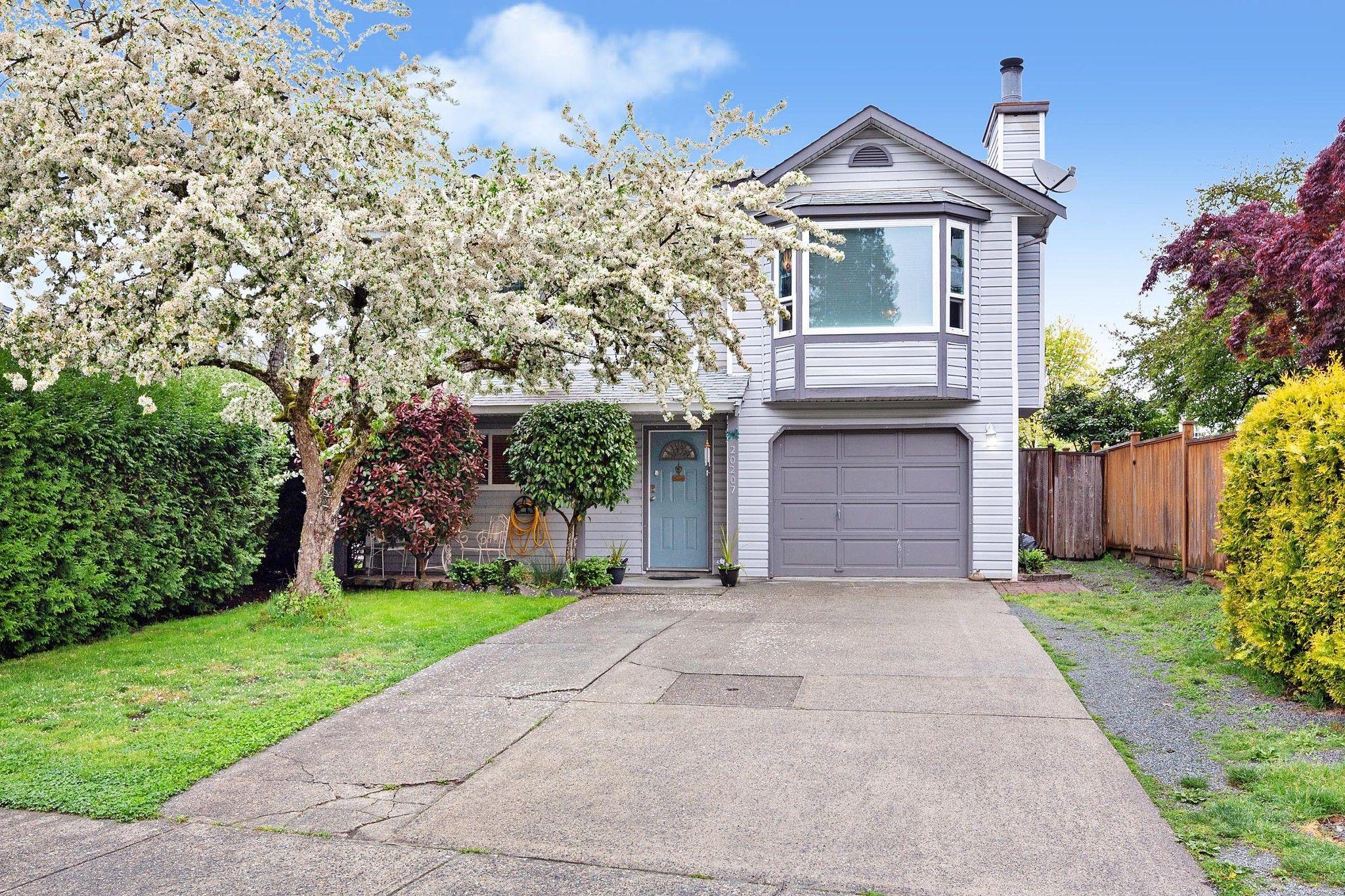 Main Photo: 20207 116B Avenue in Maple Ridge: Southwest Maple Ridge House for sale : MLS®# R2580236