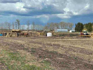 Photo 40: Twp 604 Rg Rd 244: Rural Westlock County Rural Land/Vacant Lot for sale : MLS®# E4223747