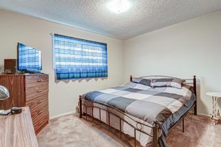 Photo 18: 511 Aberdeen Road SE in Calgary: Acadia Detached for sale : MLS®# A1153029