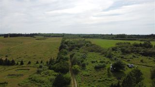 Photo 6: West Branch Road in Welsford: 108-Rural Pictou County Vacant Land for sale (Northern Region)  : MLS®# 202013159