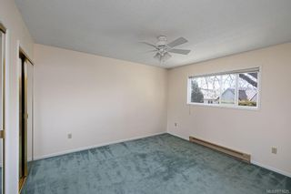 Photo 19: 4208 Morris Dr in : SE Lake Hill House for sale (Saanich East)  : MLS®# 871625
