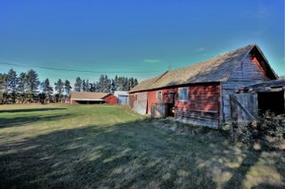 Photo 40: 56113 RGE RD 251: Rural Sturgeon County House for sale : MLS®# E4266424