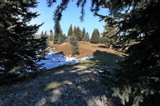 Photo 28: 20.02 Acres +/- NW of Cochrane in Rural Rocky View County: Rural Rocky View MD Land for sale : MLS®# A1065950