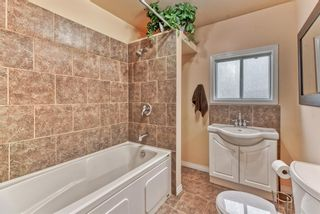 Photo 18: 8815 36 Avenue NW in Calgary: Bowness Detached for sale : MLS®# A1151045