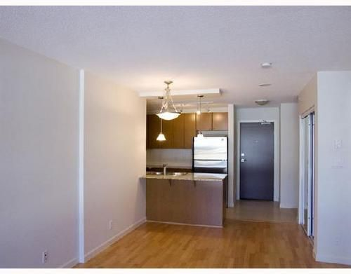 Photo 3: Photos: 408 610 VICTORIA Street in New Westminster: Downtown NW Home for sale ()  : MLS®# V664353