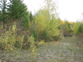 Photo 24: 80 Acres Creighton Valley Road, in Lumby: Vacant Land for sale : MLS®# 10239894