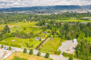 Photo 12: 19837 86 Avenue in Langley: Willoughby Heights House for sale : MLS®# R2531982