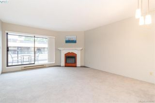 Photo 3: 305 420 Parry St in VICTORIA: Vi James Bay Condo for sale (Victoria)  : MLS®# 828944