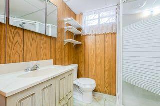 Photo 41: 11208 36 Avenue in Edmonton: Zone 16 House for sale : MLS®# E4249289