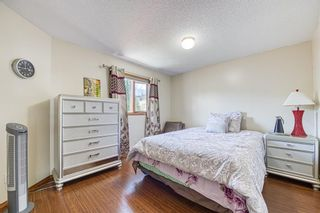 Photo 29: 23 Citadel Meadow Grove NW in Calgary: Citadel Detached for sale : MLS®# A1149022