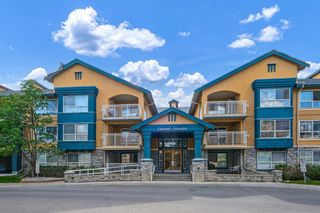 Photo 31: 320 25 Richard Place SW in Calgary: Lincoln Park Apartment for sale : MLS®# A1115963