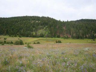 Photo 20: 1328 AC SCOTT ROAD in : Valleyview Lots/Acreage for sale (Kamloops)  : MLS®# 135387