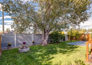 Photo 44: 6207 84 Street NW in Calgary: Silver Springs Detached for sale : MLS®# A1147522