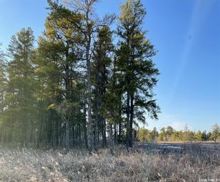 Photo 2: Over 1 acre lots in Hudson Bay: Lot/Land for sale : MLS®# SK850476