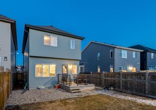 Photo 30: 269 Auburn Meadows Boulevard SE in Calgary: Auburn Bay Detached for sale : MLS®# A1082389