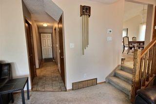 Photo 19: 147 MAYLIEWAN Close in Edmonton: Zone 28 House for sale : MLS®# E4254143