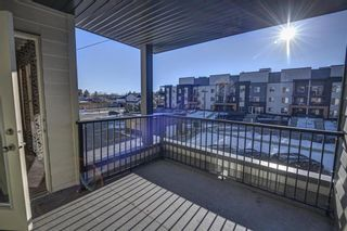 Photo 48: 2305 1317 27 Street SE in Calgary: Albert Park/Radisson Heights Apartment for sale : MLS®# A1060518