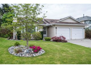 Photo 1: 20440 WALNUT Crescent in Maple Ridge: Southwest Maple Ridge House for sale : MLS®# R2164785