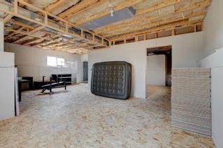 Photo 42: 57 Southbridge Crescent: Calmar House for sale : MLS®# E4254378