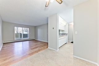 Photo 8: 103 11 Dover Point SE in Calgary: Dover Apartment for sale : MLS®# A1083330