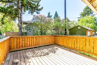 Photo 23: 4501 23 Avenue SE in Calgary: Forest Lawn Detached for sale : MLS®# A1115810