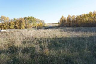 Photo 6: 31 53214 RR13: Rural Parkland County Rural Land/Vacant Lot for sale : MLS®# E4266458