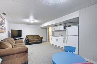 Photo 29: 1027 Penrith Crescent SE in Calgary: Penbrooke Meadows Detached for sale : MLS®# A1104837